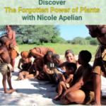 forgotten power of plants